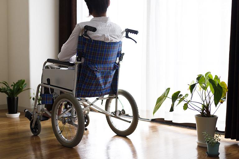 難病(特定医療費)、障害者手帳